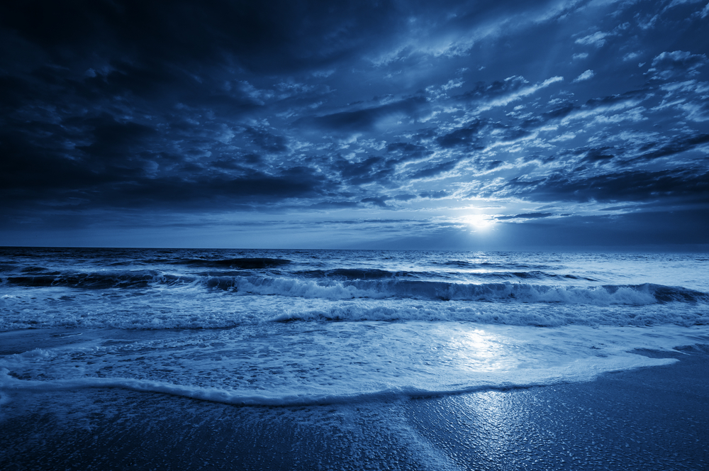 Man Walking On A Moonlit Beach